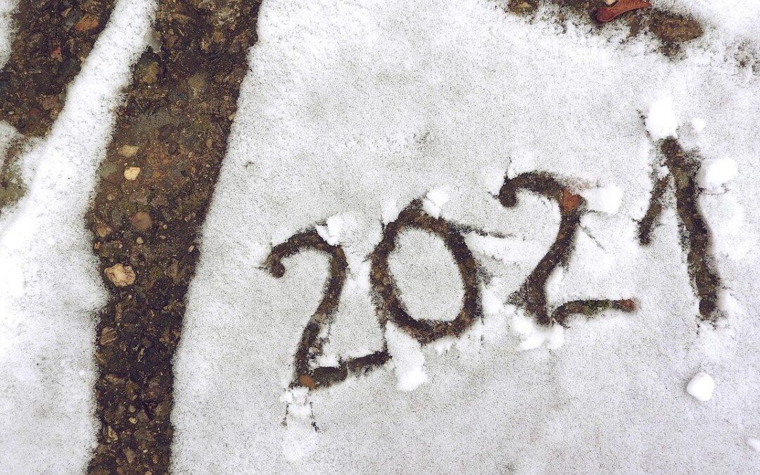 Ambiente e sostenibilità in agenda per il 2021